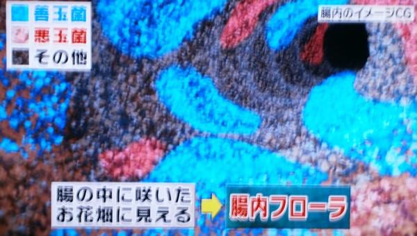 rp_chounaihuro-ra.jpg