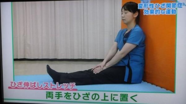 ひざ伸ばし01